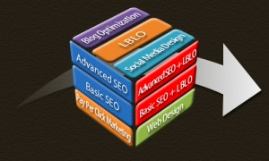 A complete Internet Presence Requires Many Pieces To Complete The Puzzle Bad Backlinks can ruin it